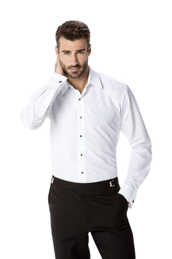 cefai 106 laydown collar plain